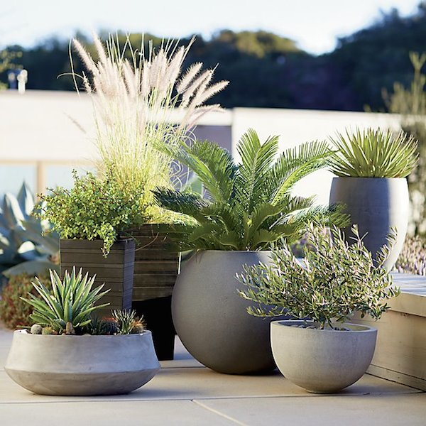 concrete-cement-ball-planters