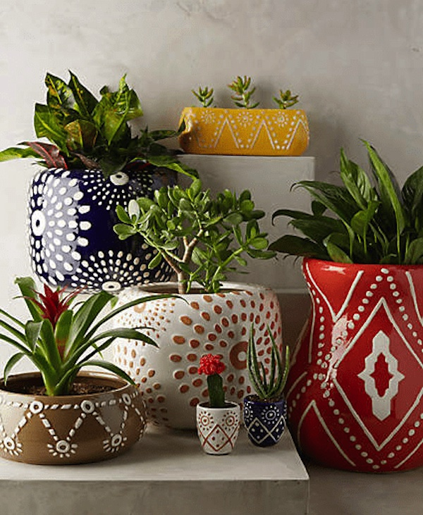 colorful ceramic plant pots