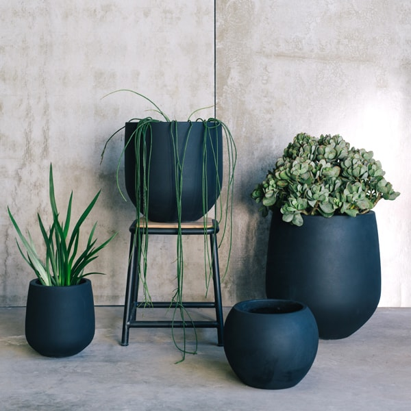 dark ceramic planter pots