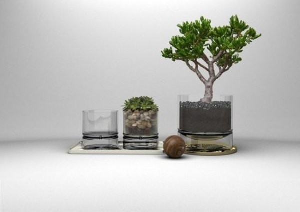 glass-planters-indoor-planters