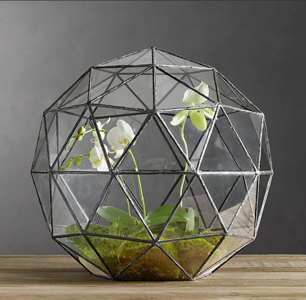 octagon glass planter terrariums