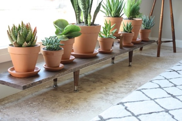 terra cotta planter pots on a midcentury bench